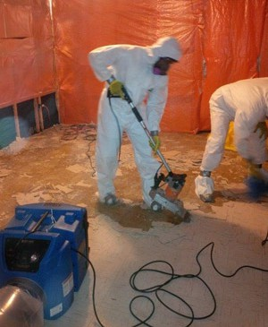asbestos testing services